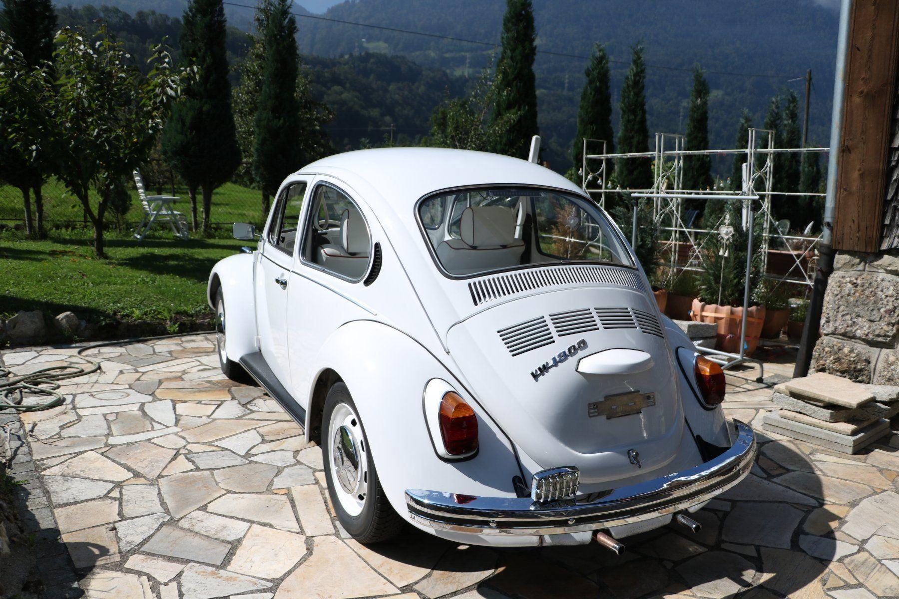 1972 Käfer hinten